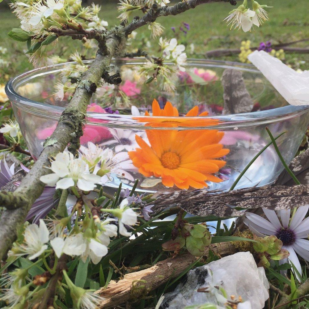 quan yin goddess essence sacred circle flower essence spring