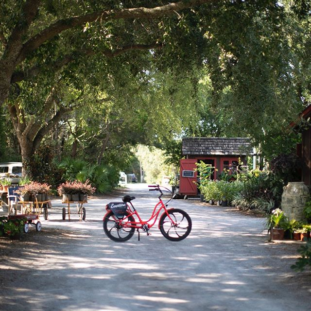 Looking for a unique outdoor experience? Try an Eventure electric bike tour!⠀⠀⠀⠀⠀⠀⠀⠀⠀ #itselectric #biketour⠀⠀⠀⠀⠀⠀⠀⠀⠀ ⠀⠀⠀⠀⠀⠀⠀⠀⠀ ⠀⠀⠀⠀⠀⠀⠀⠀⠀ #adventuretraveler #eventuresowal #floridalife #southwaltontours #vacationlikelocals #exploresouthwalton #visitflorida #adventuretraveler30a