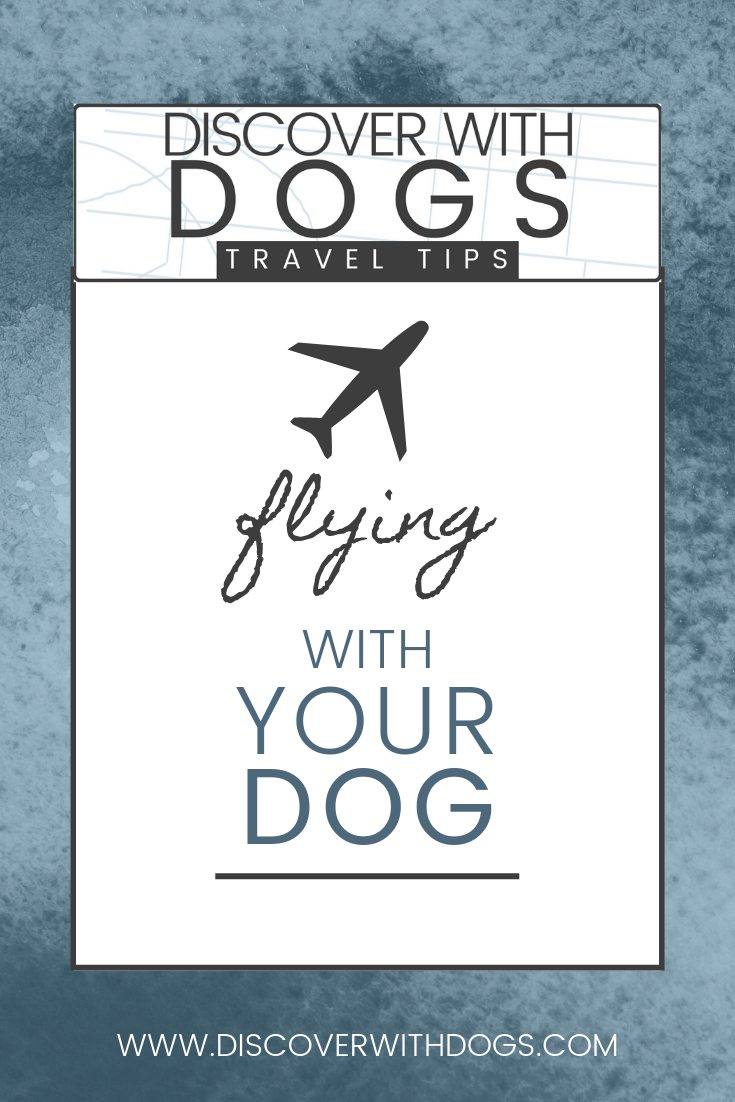 Discover with Dogs tips for flying with your dog.
