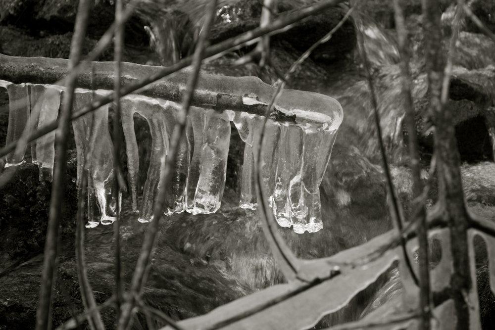 whistler-winter-ice.jpg