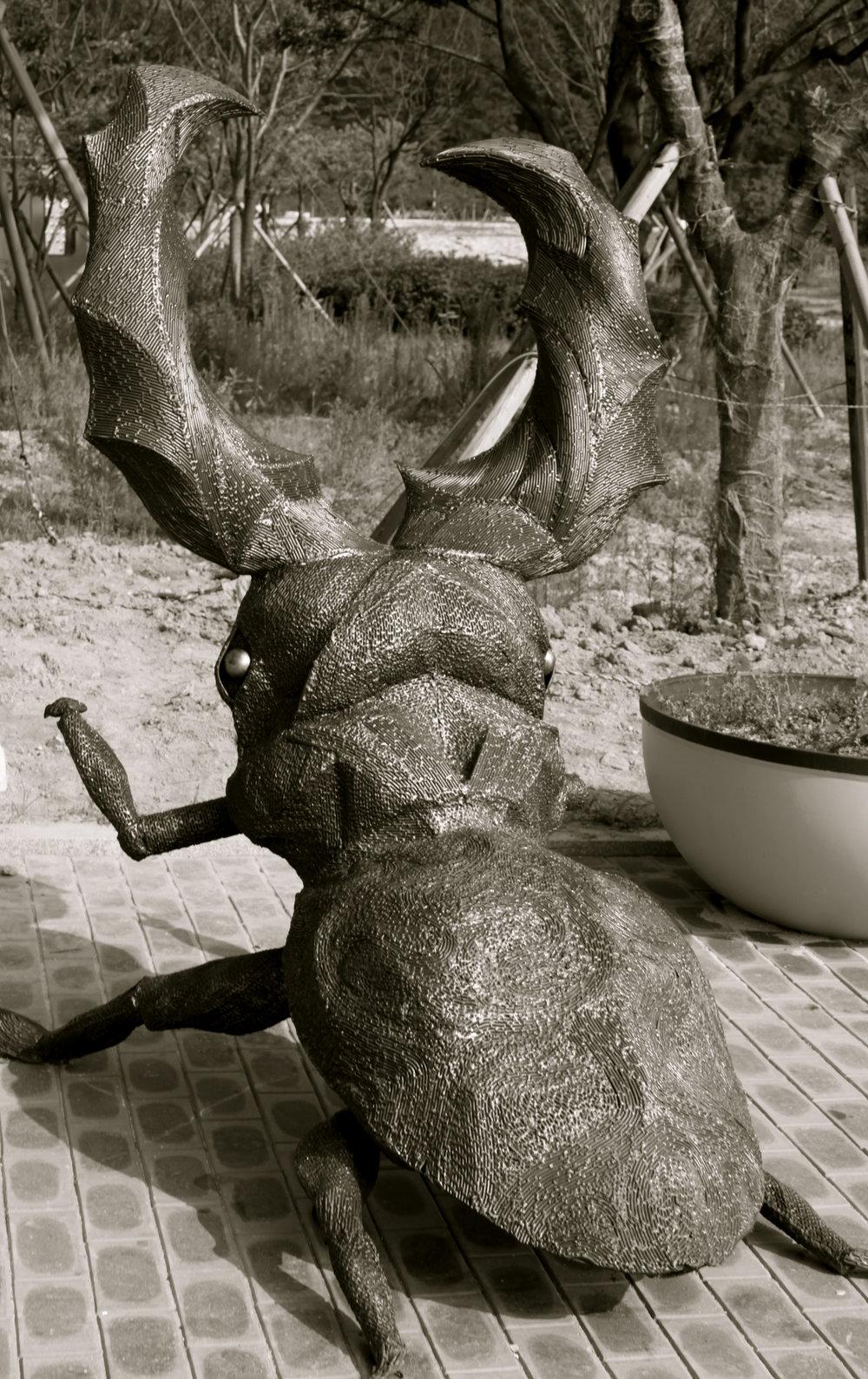 busan-insect-sculpture.jpg