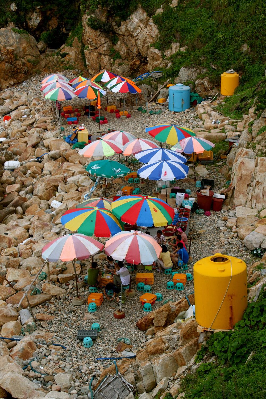 umbrellas-ulsan-beach.jpg