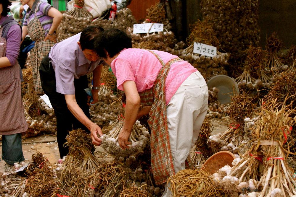 garlic-brokers-busan.JPG