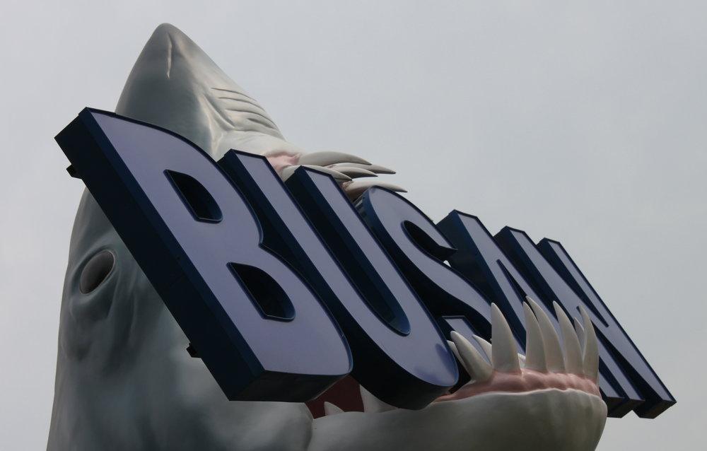 busan-shark-sign.JPG