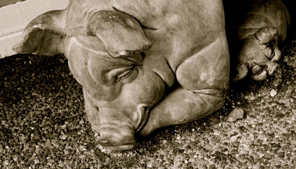 steveson-pig-statue.JPG