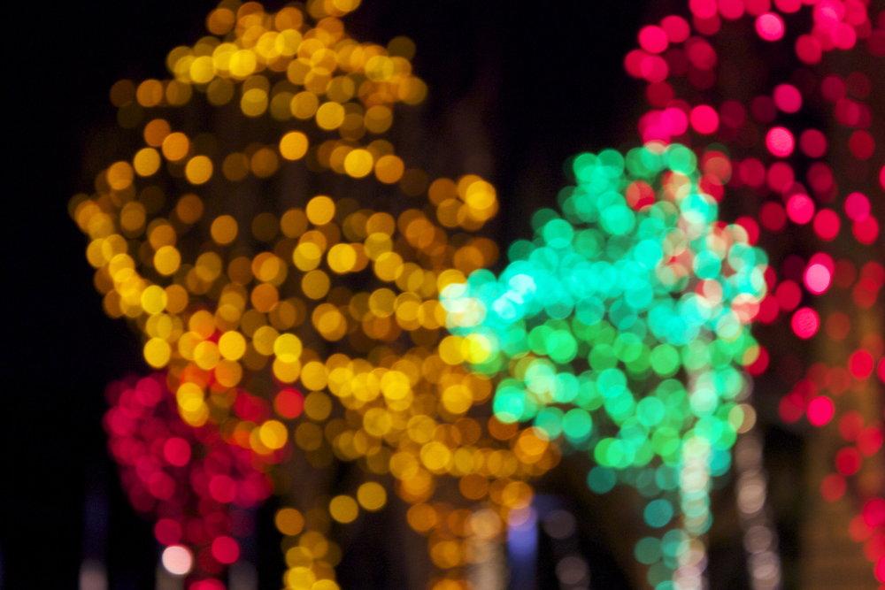 whistler-lights10.jpg