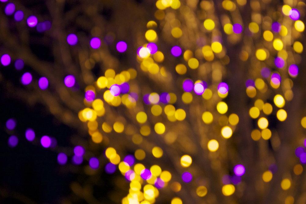whistler-lights11.jpg