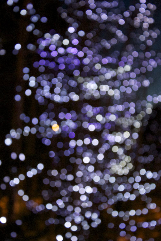 whistler-lights14.jpg