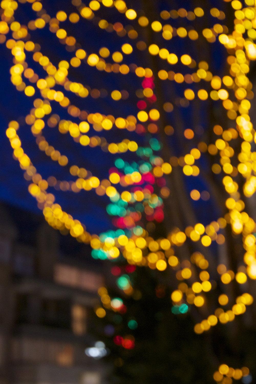 whistler-lights16.jpg
