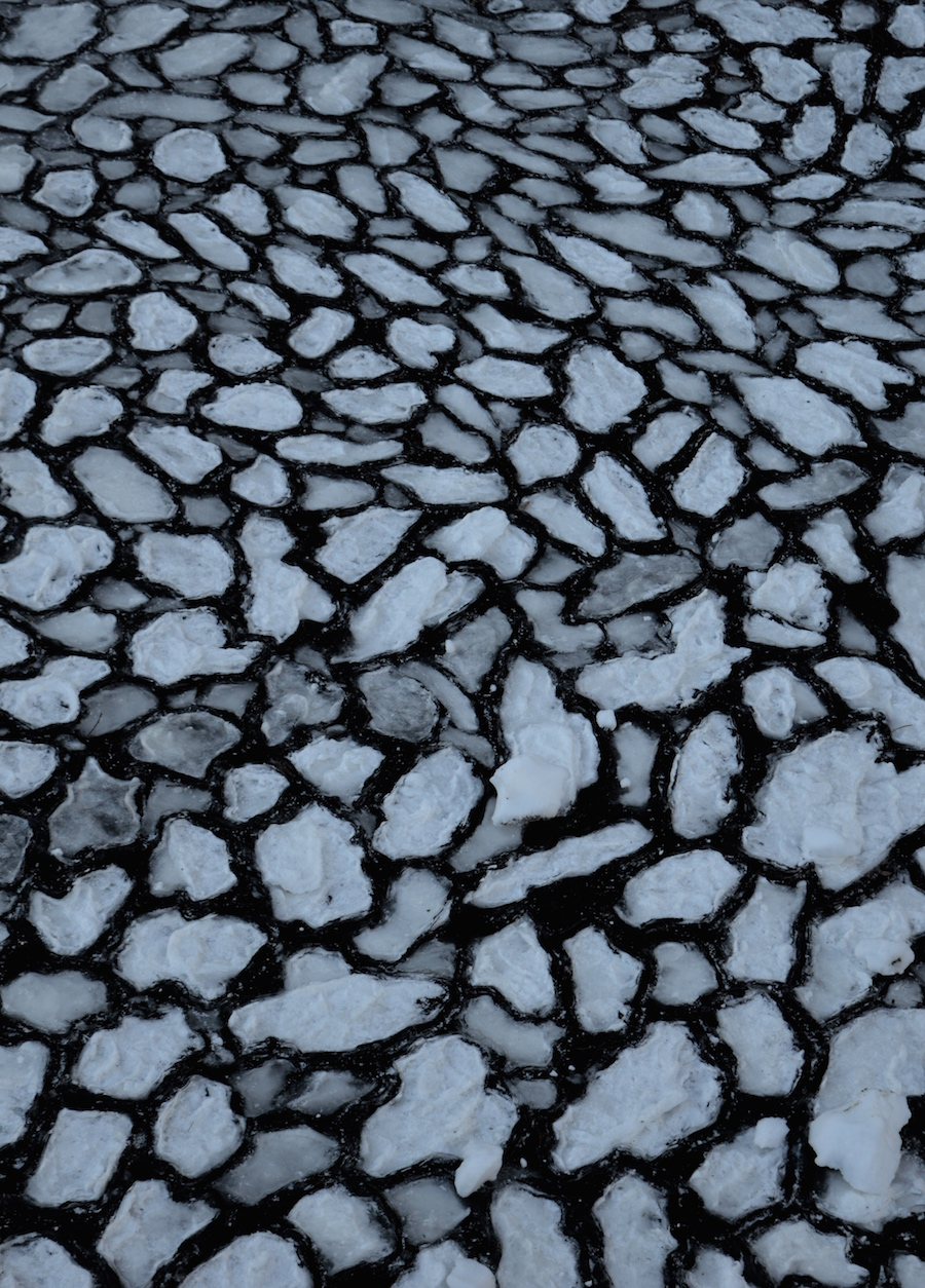whistler-lake-ice.jpg