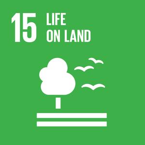 E_SDG+goals_icons-individual-rgb-15.png