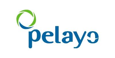 logo-vector-pelayo.jpg