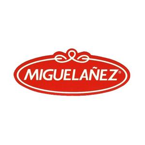 MIGUELAÑEZ.jpg