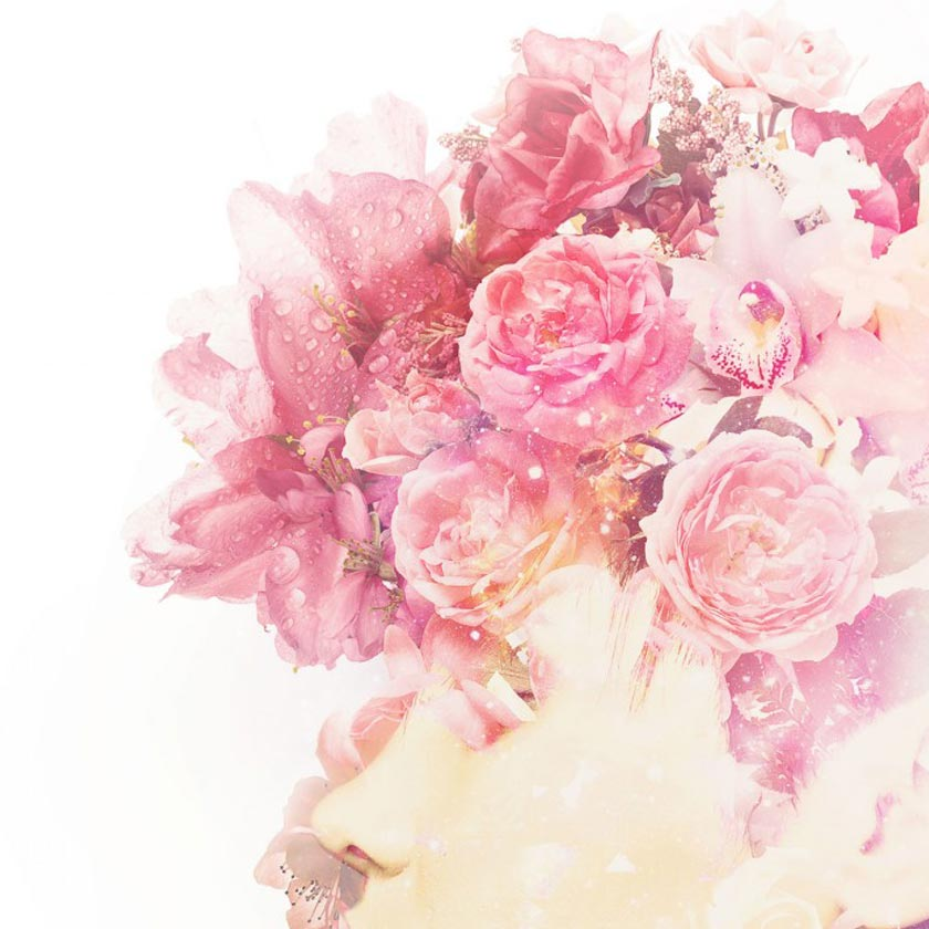 Roses-detail-2-uai-840.jpg
