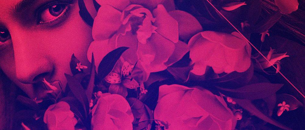 TH_Oasis_FINAL-detail-3.jpg