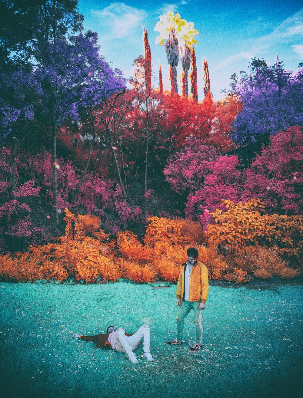 LSD_v03.jpg