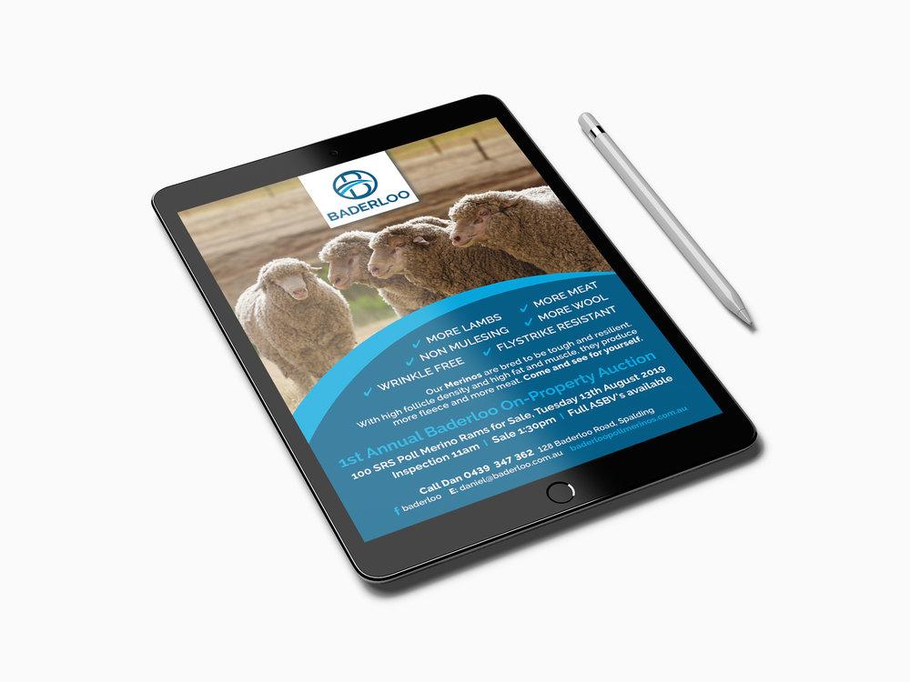 Flyer Mock Up iPad.jpg