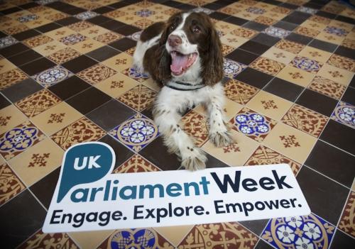 Parliament Week Picture 2.jpg