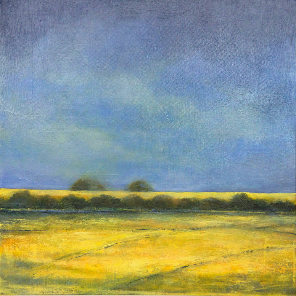 Rapeseed Fields Lewes Downs