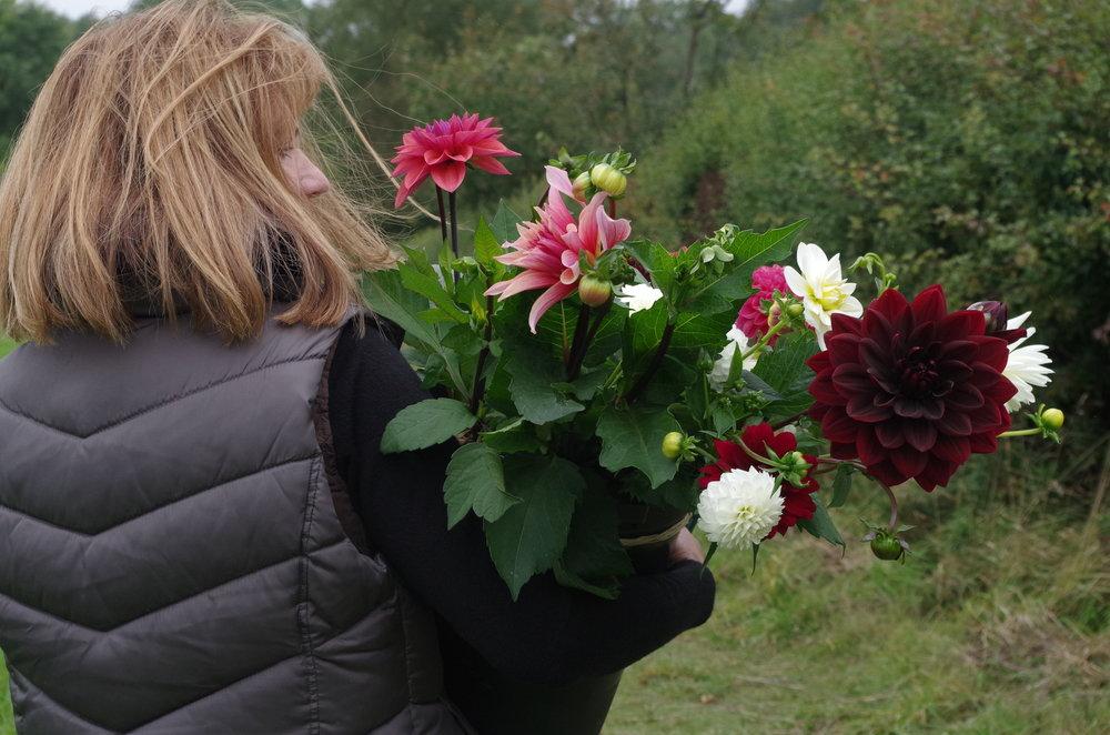 flowers07.JPG