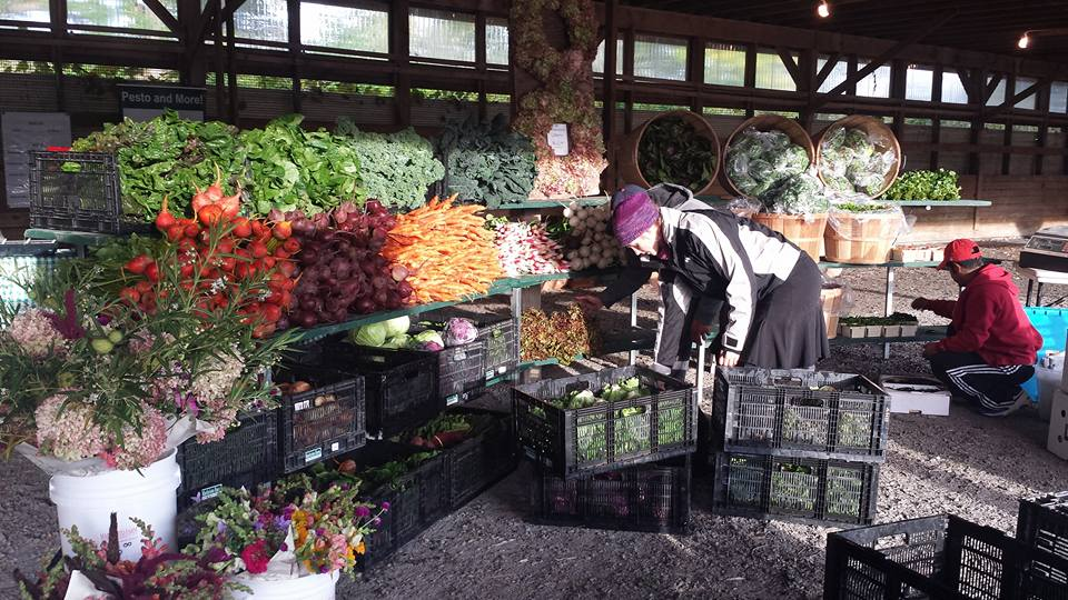 The Copake/Hillsdale Farmers' Market - 9 - 1pm Every Saturday, May 26th through October9140 State Rte 22, Hillsdale, NY 12529