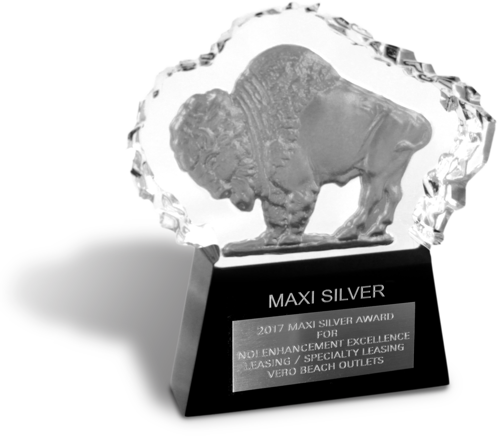 2014 U.S. Maxi Gold Winner