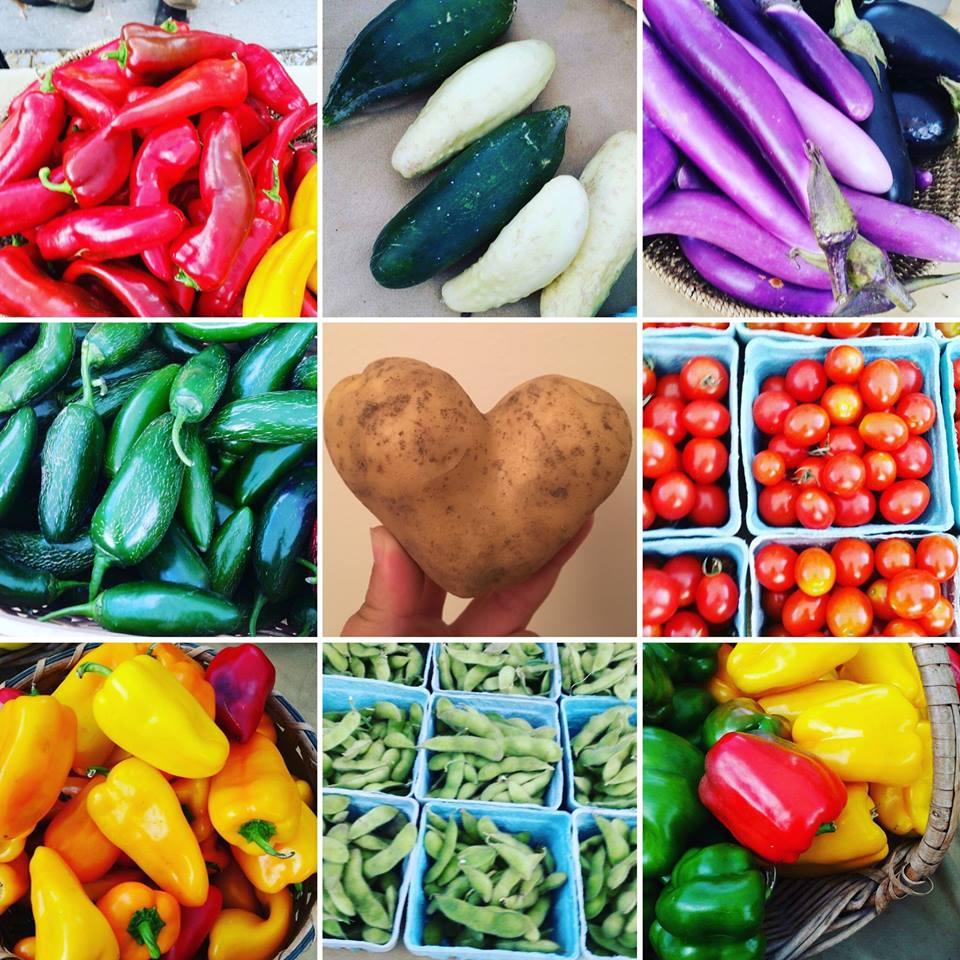 Champaign Farmer's Market.jpg