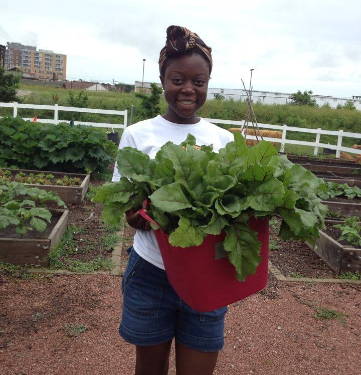 Employment - Local youth are hired through Prosperity Gardens as Production Assistants. Students learn valuable skills through their work on the farm.Learn More