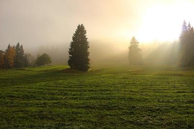 light-through-clouds-1264548_960_720.jpg