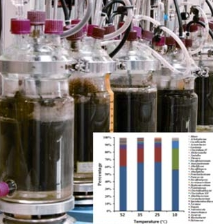 Lab. scale anaerobic bioreactors with microbiomes engineered for various metabolites ( Mahendra's lab ).