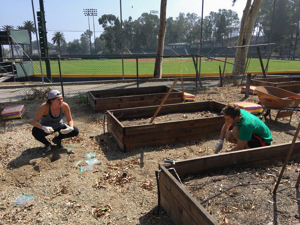 September 28, 2018: Field Lab Visit #1 to Veterans' Garden