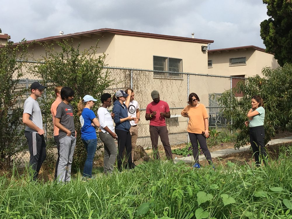 October 6, 2018: Field Lab Visit #3 to Watts Community Healing Garden