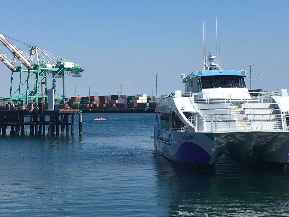A view of the port and our tour boat from the bay.