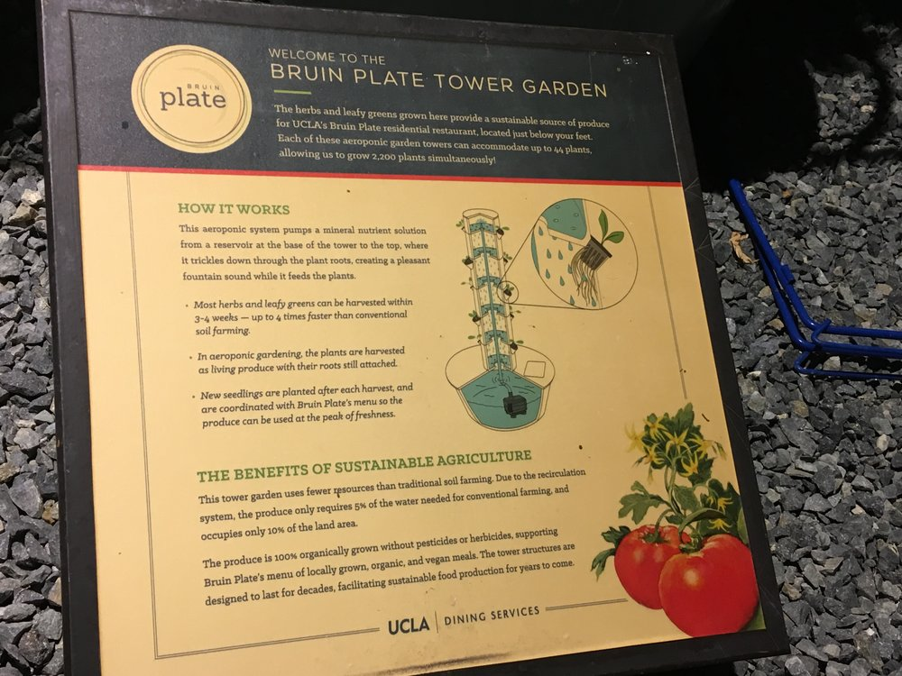 August 21, 2018: UCLA Bruin Plate Tower Garden
