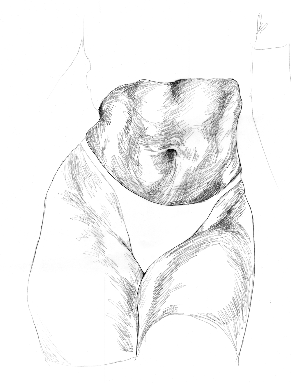 3 drawing tummy-1.png