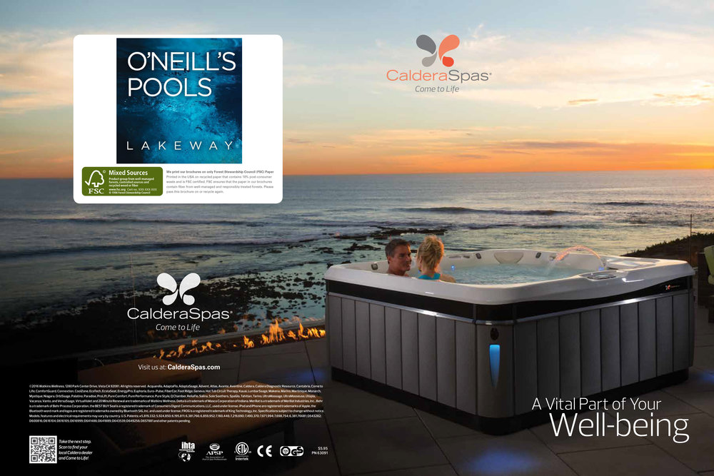Download Your FREE Guide - We Create Spas with a Focus on Comfort, Design and Performance