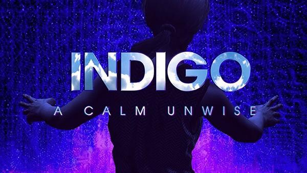 Indigo-HW-Logo.jpg