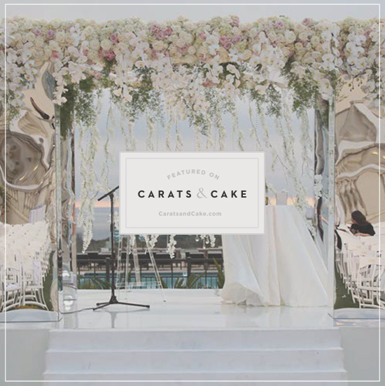IEC_press_online_CARATS_CAKE_2.jpg