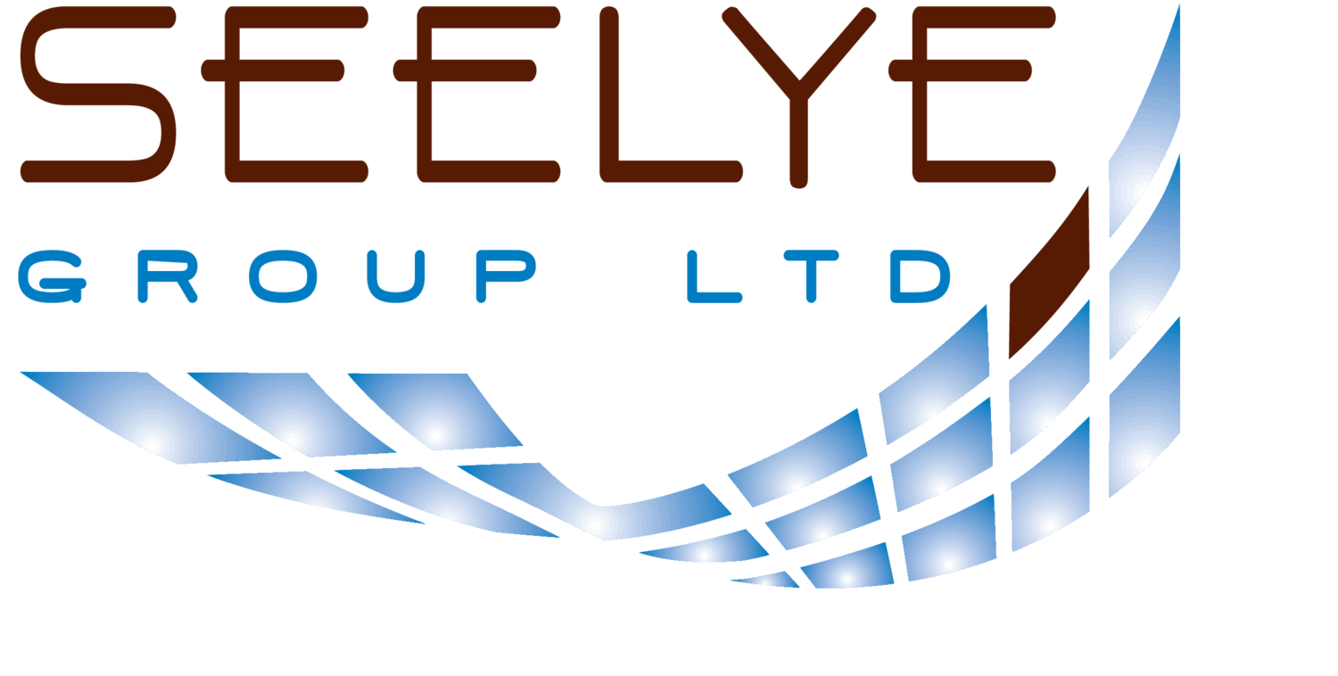 Seelye Group LTD