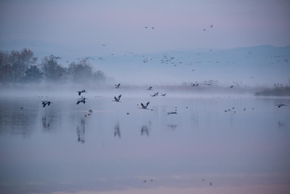 5Chula Lake Michal Greenboim.jpg