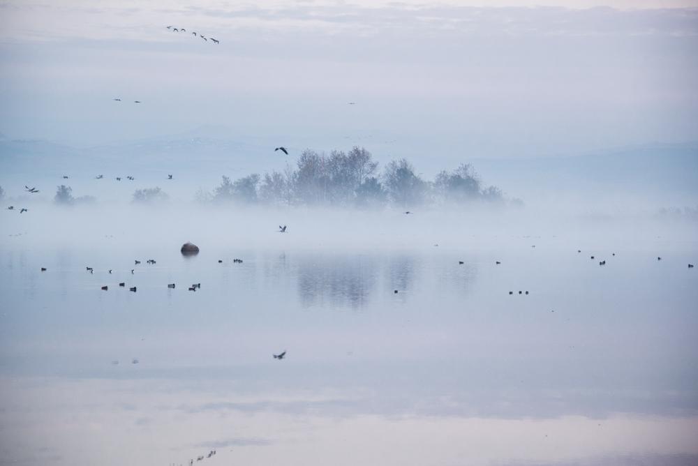 6Chula Lake Michal Greenboim.jpg