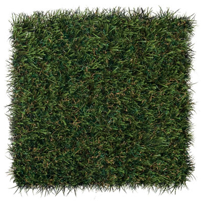 FL sportsgrass-max-patch.jpg