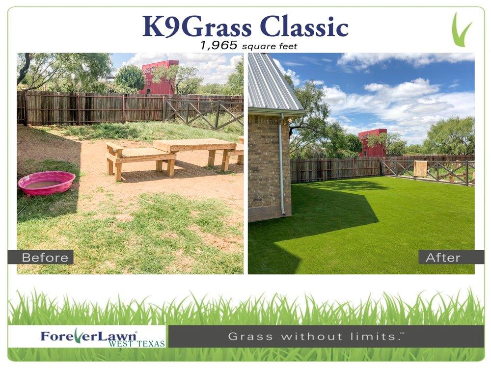 K9Grass - Page 005.jpg