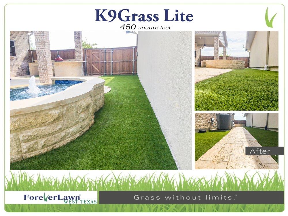 K9Grass - Page 008.jpg