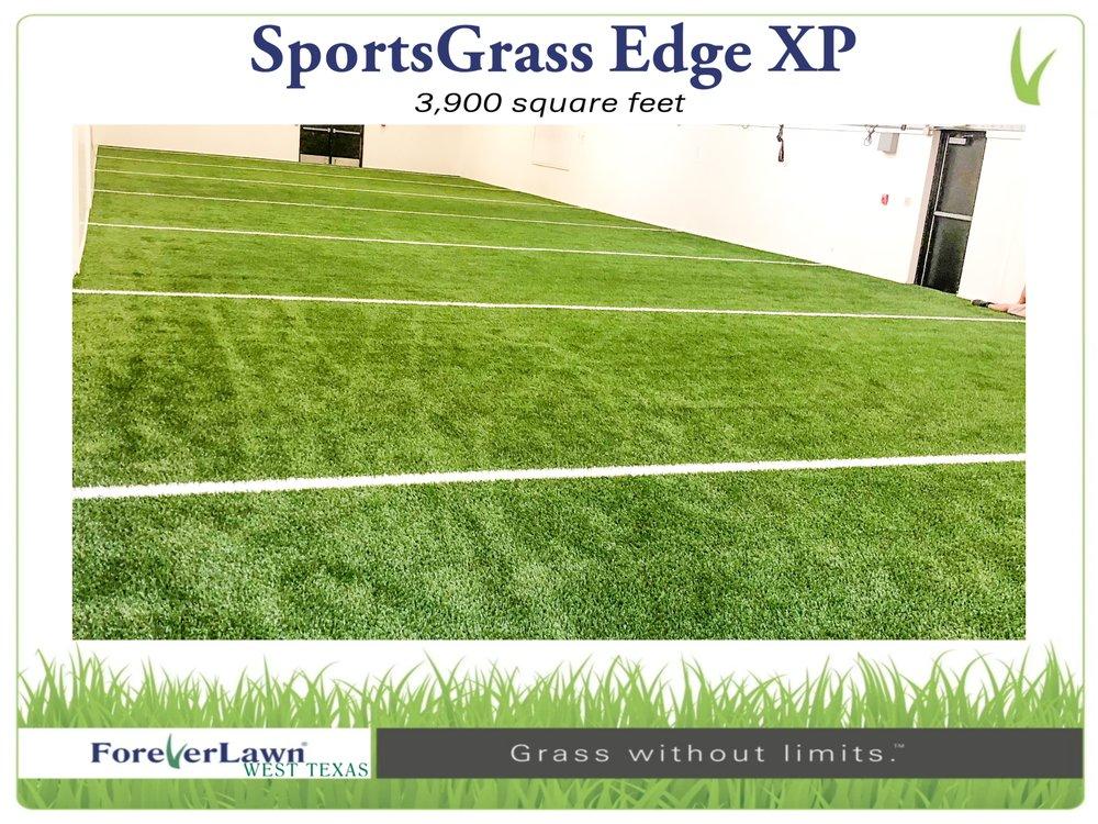 Sportsgrass1 - Page 024.jpg
