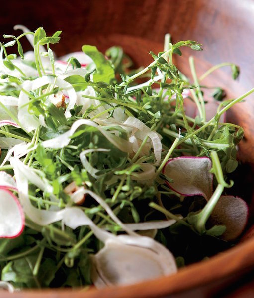 Pea Shoot Salad - Spring Produce: Pea Shoot, Fennel, Radish