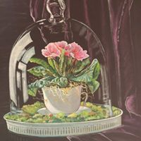 still life of flower in tea cup.jpg