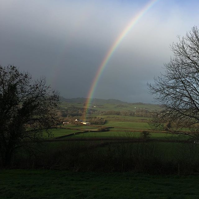 A cold wet and windy walk and then this 🌈 treat 😊 #treat #december #dogwalk #thankyou