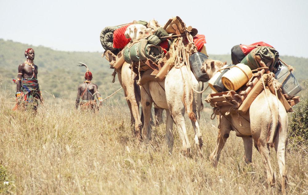 NOMAD WALK & CAMEL