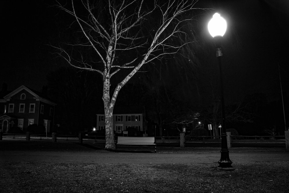tree-bench-at-night-3.jpg